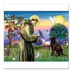 St Francis Chocolate Lab Square Car Magnet 3