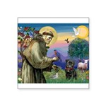 St Francis / Pug Square Sticker 3