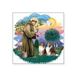 "St.Francis #2/ 2 Shelties Square Sticker 3"" x"