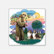 "St.Francis #2/ 2 Shelties Square Sticker 3"" x"