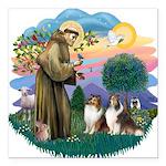 St.Francis #2/ 2 Shelties Square Car Magnet 3&quot