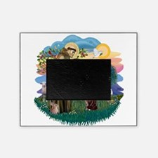 St. Fran (ff) - Maine Coon (# Picture Frame