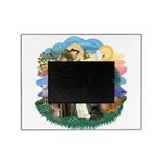 St. Fran (ff) - 3 Persian Cat Picture Frame