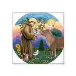 R-St Francis-ShetlandPONY.png Square Sticker 3