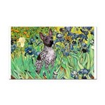 Irises-Am.Hairless T Rectangle Car Magnet