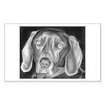 Starry Basset Dog Hoodie