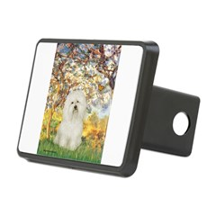 Spring / Bolgonese Hitch Cover