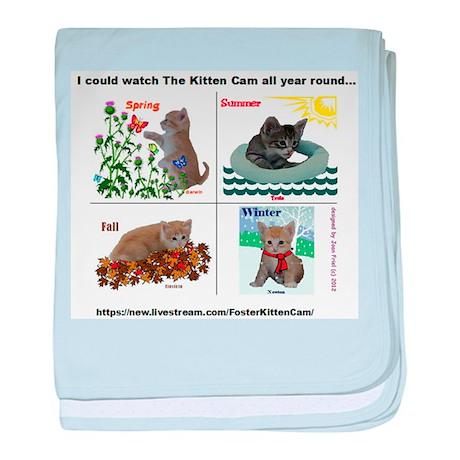 Four Seasons of The Kitten Cam Scientist Kittens b
