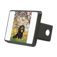 Spring & Cavalier (BT) Hitch Cover