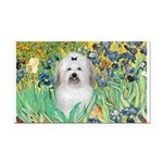 Irises / Coton Rectangle Car Magnet
