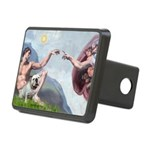 Creation / English BD (#9) Rectangular Hitch Cover
