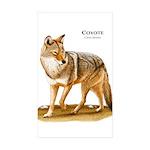 Accolade / Eng Springer Dog Hoodie