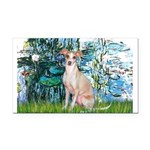 Lilies / Ital Greyhound Rectangle Car Magnet