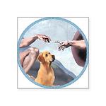 Creation/Labrador (Y) Square Sticker 3