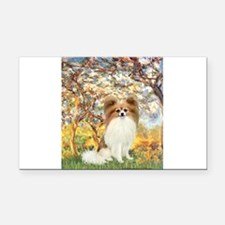 Spring / Papillon Rectangle Car Magnet