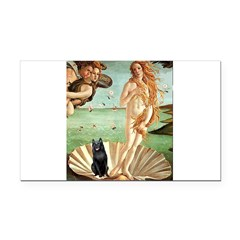 Venus / Schipperke #5 Rectangle Car Magnet