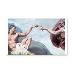 Creation / Maltese and Poodle Rectangle Car Magnet