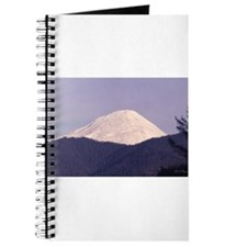 Mt. Saint Helens Journal