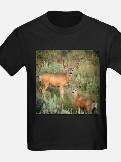 Mule deer velvet T