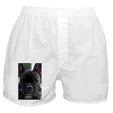 French Bulldog: Im Watching You Boxer Shorts