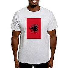 angola flag 2 T-Shirt