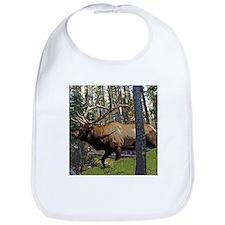 Bull elk in pines Bib