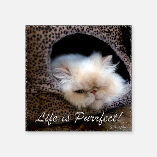 "Life is Purrfect Square Sticker 3"" x 3"""