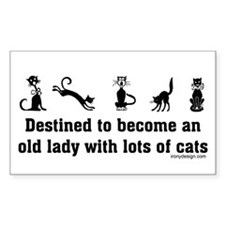 Cat Woman Rectangle Decal