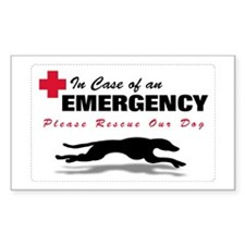 Chihuahua Power Postcards (Package of 8)