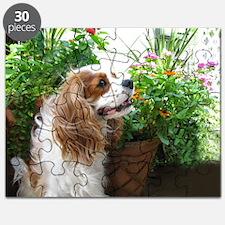 Dexter Flowers Puzzle