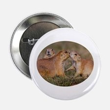 "Prairie Dog Kiss 2.25"" Button"