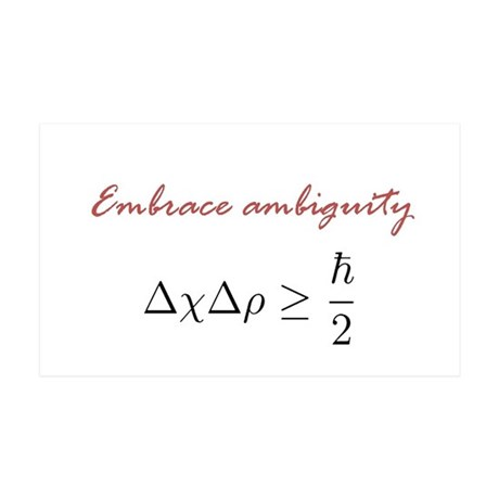Embrace Ambiguity 35x21 Wall Decal