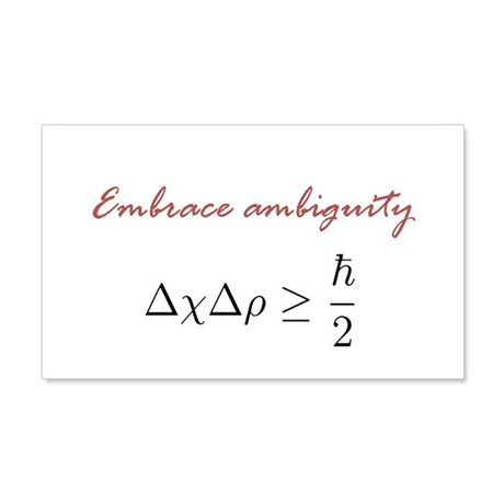 Embrace Ambiguity 20x12 Wall Decal