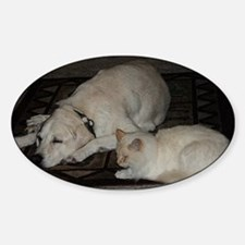 Dogs and cats Sticker (Oval)