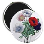 Poppy Anemones Magnet