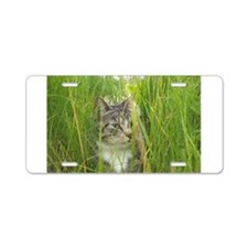Stalking Kitty Aluminum License Plate
