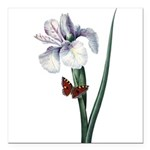 Iris with Butterfly Square Car Magnet 3