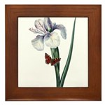 Iris with Butterfly Framed Tile