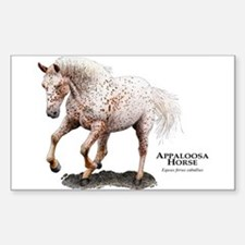 Appaloosa Horse Decal
