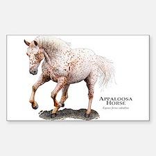 Appaloosa Horse Sticker (Rectangle)