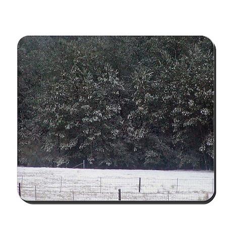 Snowy Pines Mousepad