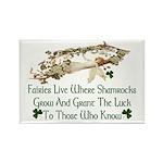 'Where Shamrocks Grow' Rectangle Magnets (10 pack)