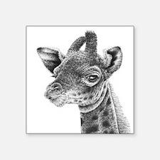 "Baby Giraffe Square Sticker 3"" x 3"""