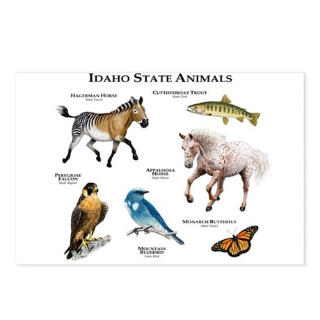 Idaho State Animals Postcards (Package of 8)