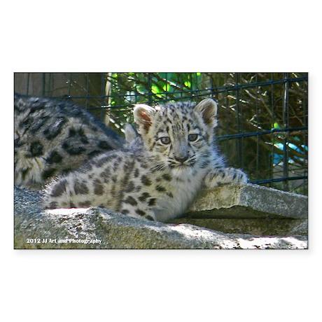 Baby Snow Leopard Sticker (Rectangle)