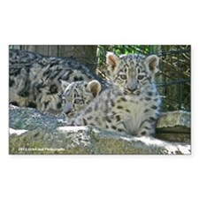 2 Baby Snow Leopards Decal
