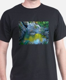 Secluded Waterfall T-Shirt