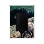Mountain Sheep Picture Frame