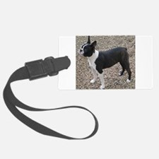 Boston Terrier Pup2 Luggage Tag