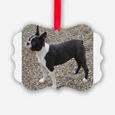 Boston Terrier Pup2 Ornament